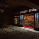 【京都旅行】まとめて観光したいオススメエリアをご紹介