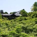 新緑の時期がベストシーズン!桜が散ったら京都へ行こう!